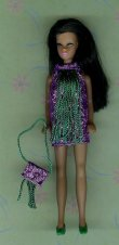 Dancing Purple with green fringe + purse
