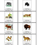 Card 30 Animals--Page 2