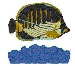 Spot-Baned Butterflyfish