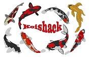 8 KoiShack jacket back design
