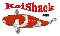 Big Kohaku KoiShack