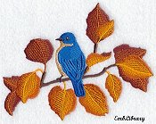 Bluebird Autumn