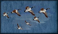 7 flying Canadian Geese
