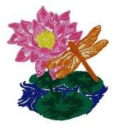 Lotus & Dragonfly
