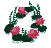 Lotus Scene