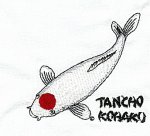 Tancho Kohaku